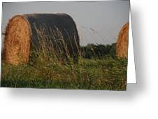 Rolled Bales Of Hay Greeting Card