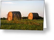 Rolls Of Hay Greeting Card
