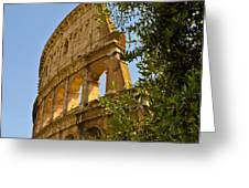 Roman Coliseum Greeting Card