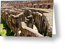 Roman Coliseum Underground Greeting Card