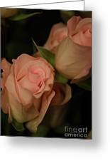 Romance In Pink Greeting Card