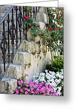 Romantic Steps Greeting Card