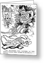 Roosevelt Cartoon, 1902 Greeting Card