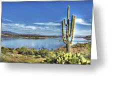 Roosevelt Lake  Greeting Card