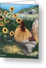 Rooster One Eyed Jack Greeting Card