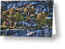 Rooted In Solid Rock Greeting Card