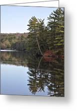 Rope Swing On Bear Creek Lake Greeting Card