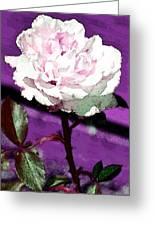 Rose 108 Greeting Card