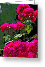 Rose 135 Greeting Card