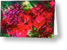 Rose 143 Greeting Card by Pamela Cooper