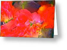 Rose 144 Greeting Card