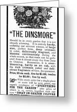 Rose Advertisement, 1890 Greeting Card