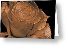 Rose Art  Sepia Greeting Card