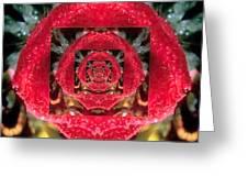Rose Cut Greeting Card