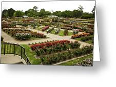 Rose Garden Park Tyler Texas Greeting Card