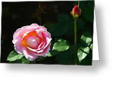 Rose In Chicago Botanic Garden Greeting Card