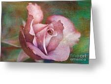 Rose Of Romance Greeting Card