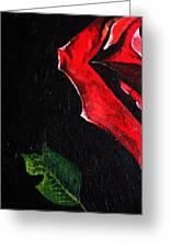 Rose Petal Greeting Card