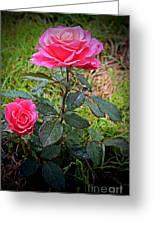 Rose Vignette Greeting Card
