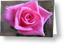 Rose With Droplets Greeting Card