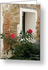 Roses And Antiquity  Greeting Card