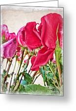 Roses In White Greeting Card