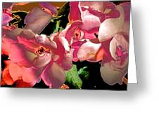 Rosie Abstract Greeting Card