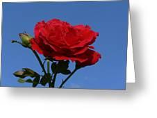 Rosie Skies Greeting Card