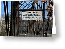 Rube Nelson Bridge 2 Greeting Card