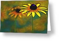 Rudbeckia Hirta Greeting Card