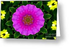 Rugosa Kaleidoscope Greeting Card