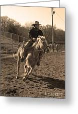 Running The Horse Greeting Card