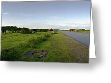 Runway Light With Cows Greeting Card