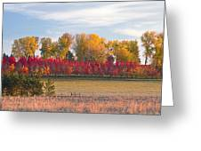 Rural Country Autumn Scenic View Greeting Card