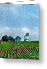 Rural Farm Greeting Card