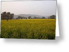 Rural Landscape With A Field Of Mustard Greeting Card