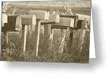 Rural Mail Boxes In Sepia Greeting Card
