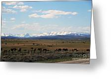 Rural Wyoming - On The Way To Jackson Hole Greeting Card