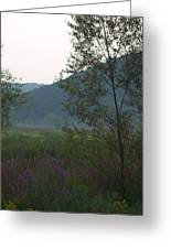 Rush Creek In The Mist Greeting Card