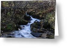 Rushing Creek Greeting Card