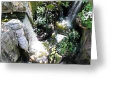 Rushing Green Greeting Card