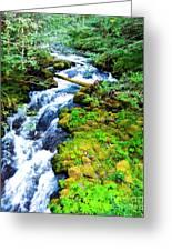 Rushing Mountain Stream Greeting Card