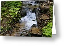 Rushing Water On Mt Spokane Greeting Card