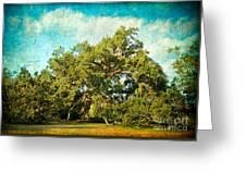 Ruskin Oak Greeting Card