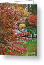 Rust Colored Leaves Over Autumn Pond Greeting Card