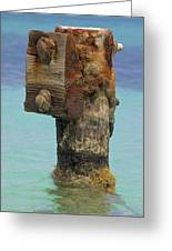 Rusted Dock Pier Of The Caribbean Iv Greeting Card