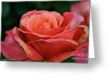 Rustic Rose Greeting Card