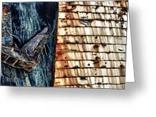 Rusting Boat Anchor Greeting Card