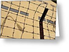 Rusty Barbed Wires Fence  Greeting Card