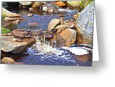 Rusty River Greeting Card